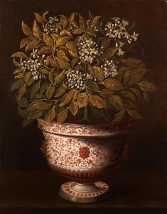 Hiepes, Tomás ~ Terracotta Vase with an Orange Bush in Flower