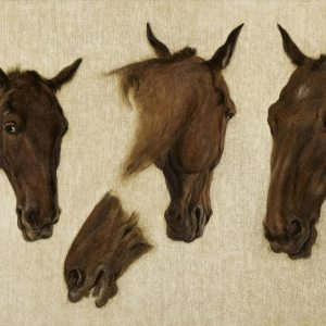 Agasse, Jacques-Laurent ~ Equine Study