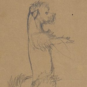 Boutet de Monvel, Bernard ~ Preparatory drawing of Champagne for Sylvie Boutet de Monvel and her dog, Champagne in Nemours I